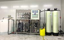 0.75吨双级RO+EDI超纯水装置